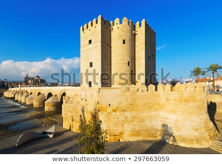 the calahorra tower cordoba spain stock photo © borisb17