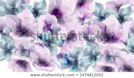 Viola floreale vettore acquerello rustico poster Foto d'archivio © frimufilms