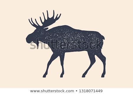 retro moose silhouette logo stock photo © barsrsind