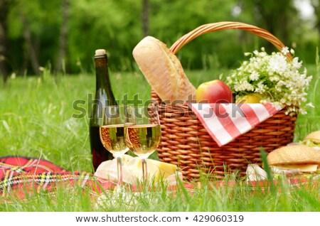 Apetitoso lanches frutas vinho piquenique Foto stock © dashapetrenko