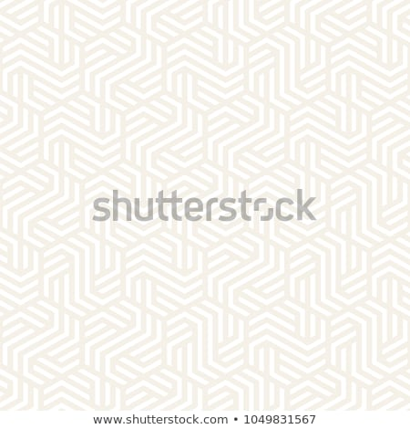 Vektor Muster modernen stylish abstrakten Stock foto © samolevsky