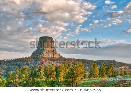 cloudy devils tower morning Stock photo © pancaketom