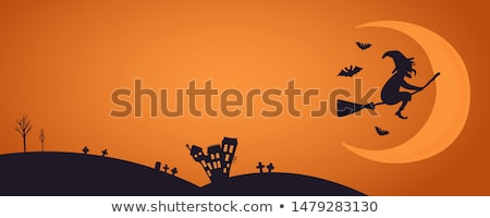 Witch with broomstick in color and outline and silhouette cartoo Stock photo © bluering