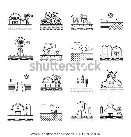 Trator campo de trigo ícone vetor ilustração Foto stock © pikepicture