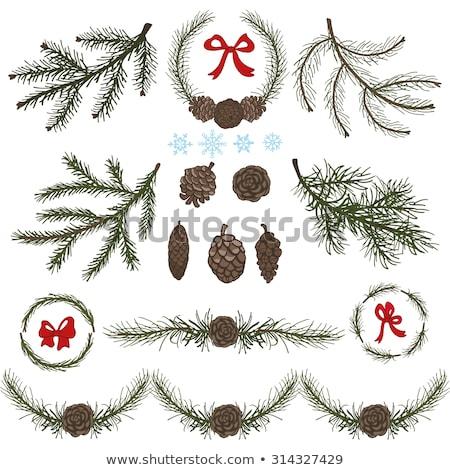 Stock fotó: Karácsony · íjak · örökzöld · ág · fenyőfa · fa