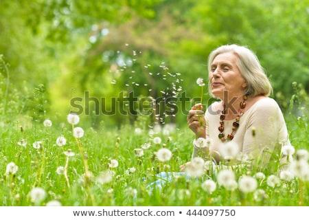 Oude dame park glimlach haren bril hoed Stockfoto © photography33