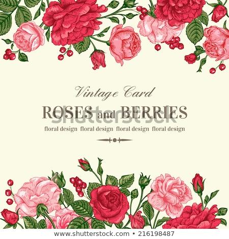 elegante · romantica · carta · rosso · bianco · copia · spazio - foto d'archivio © marimorena