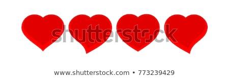 çift kalp yalıtılmış beyaz Stok fotoğraf © calvste