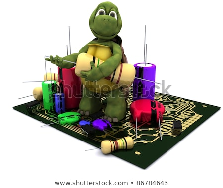 Tortoise With A Micro Chip Stockfoto © Kjpargeter