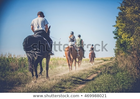 Young people and horses Stock photo © photography33