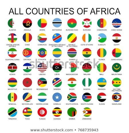 Камерун флаг икона изолированный белый интернет Сток-фото © zeffss
