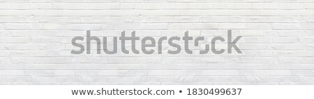 flaked off whitewashed brick wall stock photo © digitalr