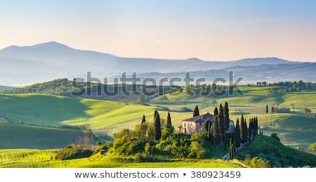 Stok fotoğraf: Tuscany Villa In Tuscany Italy