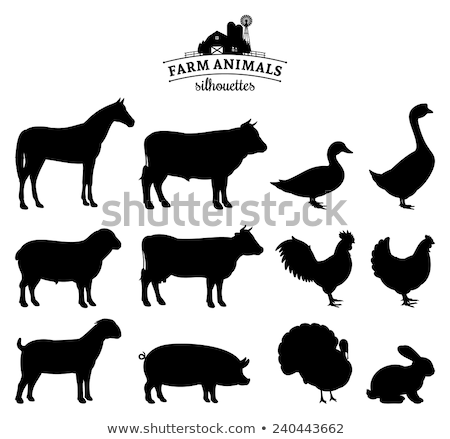 Animaux de la ferme silhouettes design croix lapin Photo stock © Kaludov