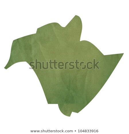 New Brunswick map on green paper Stock photo © speedfighter