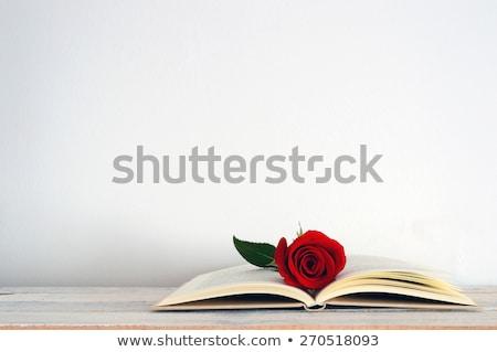 kırmızı · gül · açık · kitap · aziz · gün · gelenek - stok fotoğraf © oleksandro