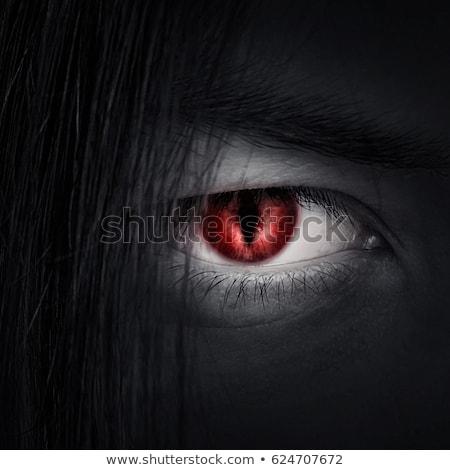 Male vampire Stock photo © sumners