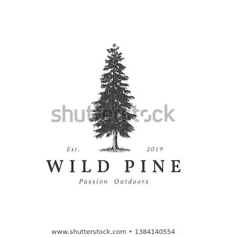 Grunge tree icon stock photo © WaD