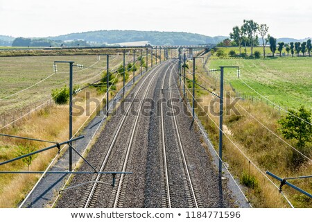 Railroad Tracks with Catenary Wire overhead Stock photo © oliverjw