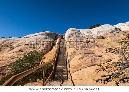 Stromy schody żółty górskich niebo Zdjęcia stock © tab62