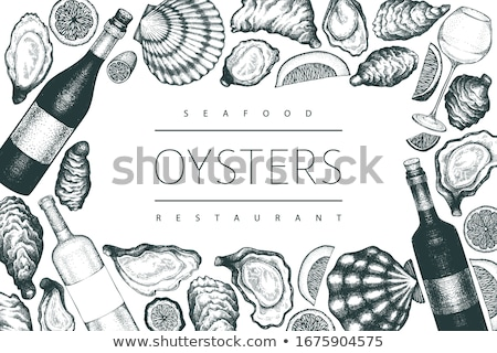 Underwater banners with cockleshells, vector illustration Stock photo © carodi