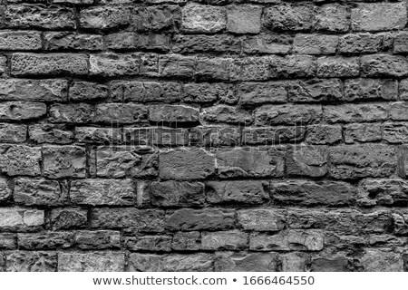 vintage tile layers hammer Stock photo © RedDaxLuma