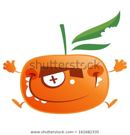 Fou cartoon orange fruits personnage Photo stock © Thodoris_Tibilis