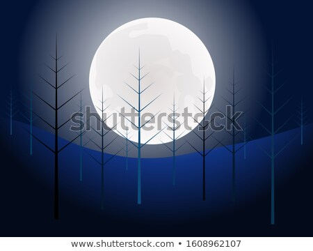 night time and full moon in the forest under a pine tree stock photo © aetb