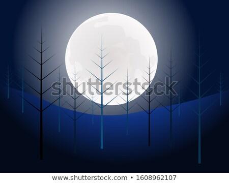 Nacht tijd volle maan bos pijnboom heldere hemel Stockfoto © aetb