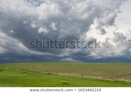 storm clouds over a prairie Stock photo © PixelsAway