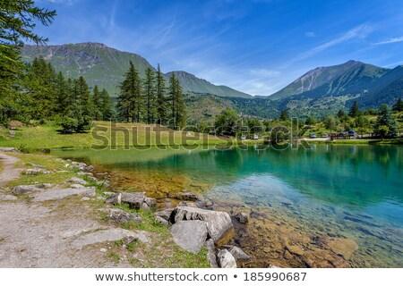 Italiaans · la · bos · landschap · zomer · Blauw - stockfoto © rglinsky77