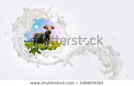 草で覆われた 波 草原 草 抽象的な 波 ストックフォト © przemekklos