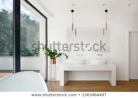 Stok fotoğraf: Zarif · modern · banyo · güzel · yeni · ev · özellik