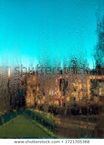 Through the widow glass Stock photo © eleaner