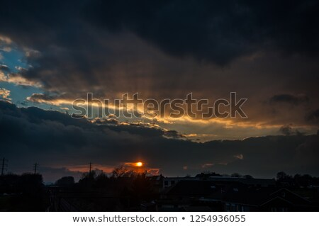 日没 ベルギー 川 自然 森林 木 ストックフォト © compuinfoto