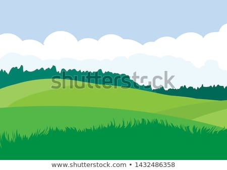 Countryside field landscape with grass and bushes Stock photo © Sportactive