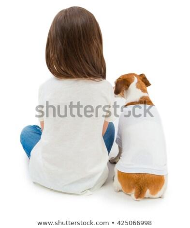 kobieta · husky · domu · kobiet · biały · zwierząt - zdjęcia stock © dnf-style