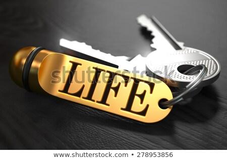 ключами · слово · развития · Label · черный - Сток-фото © tashatuvango