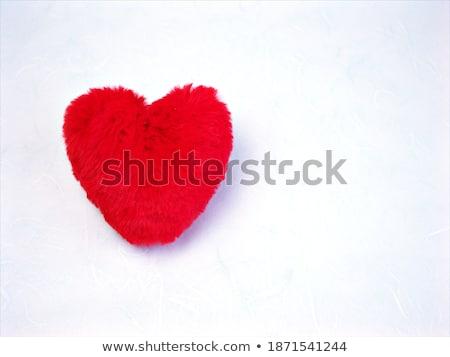 joie · lettres · rouge · coeur · isolé · blanche - photo stock © jaffarali