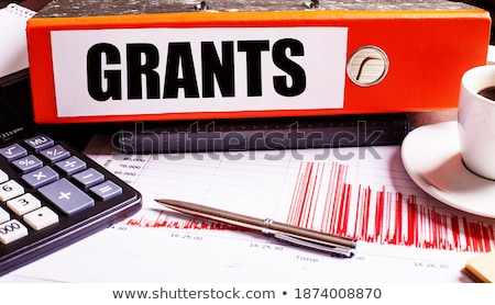Red Office Folder with Inscription Scholarship. Stock photo © tashatuvango