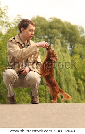 Young man plays with his adorable dachshund  outdoor Stock photo © Paha_L