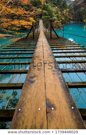 wooden suspension bridge in wood wide angle stock photo © paha_l