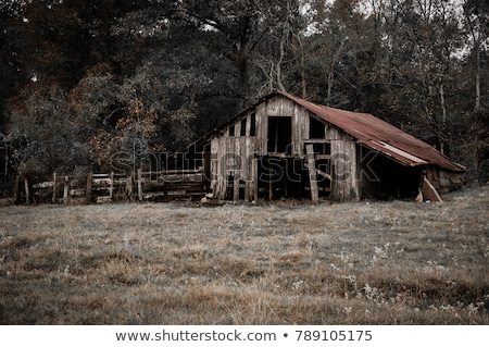 Oude verlaten schuur landschap USA Stockfoto © Backyard-Photography