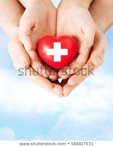 Férfi kezek tart piros szív donor Stock fotó © dolgachov