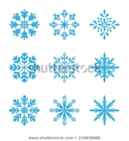 set variation snowflakes isolated Stock photo © smeagorl