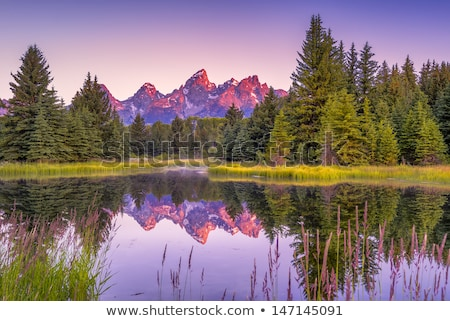 Teton Range Reflected Smooth Water Grand Teton's National Park Stock photo © cboswell