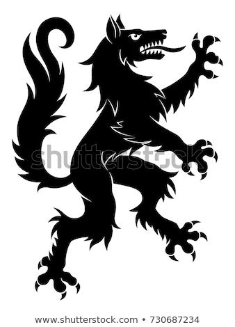 Lobo ilustración heráldica tatuaje diseno aislado Foto stock © Genestro