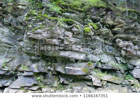 Igneous Rock Detail Stock photo © Serg64