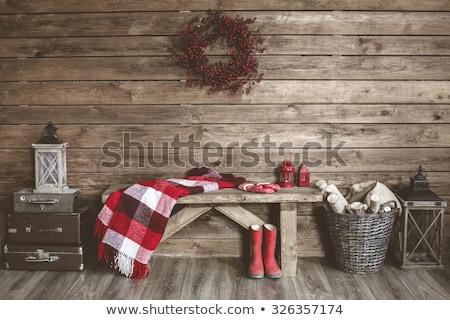 Ev ayakkabı yalıtılmış beyaz Stok fotoğraf © cosma