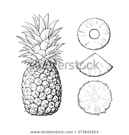 Vers ananas voedsel Geel Stockfoto © Digifoodstock